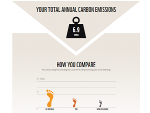 my annual carbon emissions