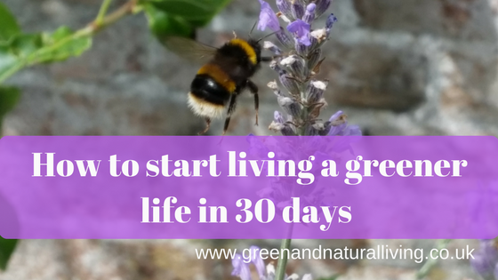 30 days to a Greener Life