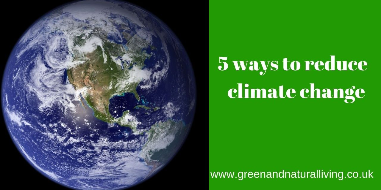 5 ways to reduce climate change